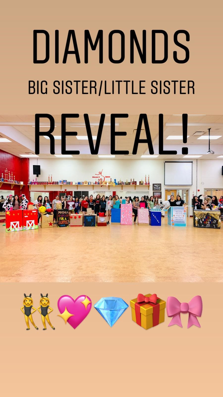 Big Sister and Little Sister Reveal